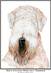 Soft Coated Wheaten Terrier Open Edition Gift Item