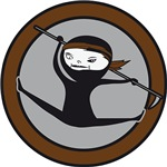 Brown Belt Ninja