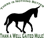 Nothing Better Gaited Mule
