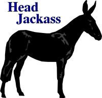 Head Jackass