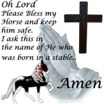 Racking Horse Bless