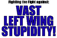VAST LEFT WING STUPIDITY! T-shirts & Apparel