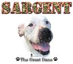 Sargent's Aisle