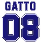 Gatto 08