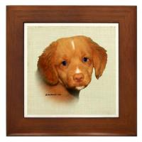 Toller Coasters, Tiles, Jewellery Boxes & Trinket