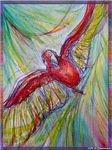 Macaw! Red Parrot! bright art!