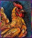 Chicken, hen, animal, art