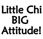 Chihuahua/Chiweenie - Little Chi, Big Attitude