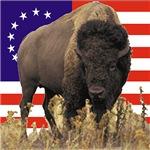 Bison US Flag