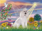 CLOUD ANGEL<br>& White Standard Poodle #6