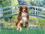 LILY POND BRIDGE<br>& Australian Shepherd #4
