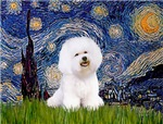 STARRY NIGHT<br>& Bichon Frise