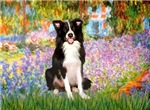 GARDEN<br>& Border Collie