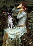 OPHELIA<br>& Boston Terrier