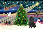 CHRISTMAS MAGIC<br>& Schipperke (#2)