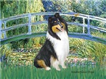 LILY POND BRIDGE<br>& Tri Color Collie