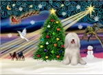 CHRISTMAS MAGIC<br>& White Tibetan Terrier#2