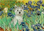 IRISES<br>& West Highland Terrier