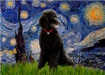 STARRY NIGHT<br>& Black Standard Poodle