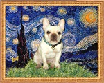 STARRY NIGHT<br>& Fawn French Bulldog