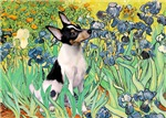 IRISES<br>& Toy Fox Terrier