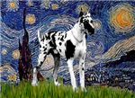 STARRY NIGHT<br>& Harlequin Great Dane