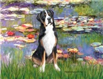 WATER LILIES<br>Greater Swiss Mountain Dog