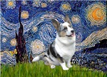 STARRY NIGHT<br>& Blue Merle Welsh Corgi