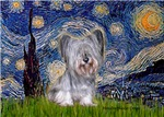 STARRY NIGHT<br>With SKye Terrier #3