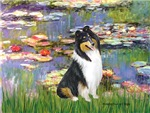 WATER LILIES<br>& Tri Color Collie