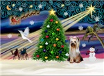 CHRISTMAS MAGIC<br>& Yorkshire Terrier (#2)