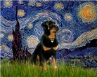 STARRY NIGHT<br>& Rottweiler #5