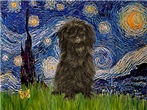 STARRY NIGHT  & Affenpinscher