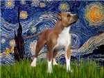STARRY NIGHT<br> & American Staffordshire