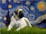 STARRY NIGHT<br>& Bull Mastiff