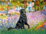 GARDEN AT GIVERNEY<br>&Flat Coated Retriever