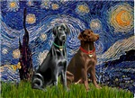 STARRY NIGHT<br>& Two Labrador Retrievers