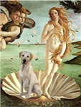BIRTH OF VENUS<br>Yellow Labrador Retriever