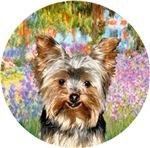 Yorkshire Terrier #17<br>Garden at Giverney