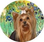 Yorkshire Terrier #17<br>Irises by Van Gogh