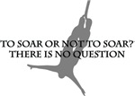 To Soar Or Not To Soar-(bungee jumping)