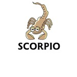 Scorpio t-shirts, birthday gifts