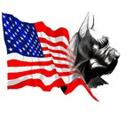 Drawings of many Different Patriotic Schnauzers, s