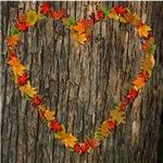 Love/Heart Autumn