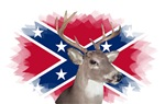 Confederate Flag and Buck