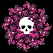 Over 20 Lady Austere Flowers For Skulls Shirts