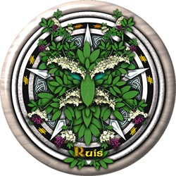 Elder Celtic Greenman Pentacle