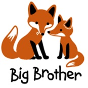 Big Brother  - Mod Fox