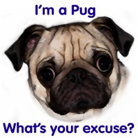 I'm a Pug - What's your excuse