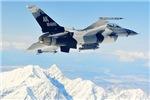 F-16 Fighting Falcon Aggressor